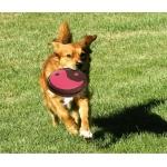 Игрушка Frisbee